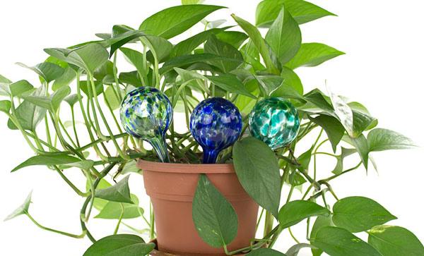 Система самополива комнатных растений
